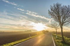 On the road...  #neuesvomfotokombinat #landscape #landschaft #unterwegs #travel #sunset #sonne #bäume #trees #sachsenanhalt #soschönistdeutschland #weroamgermany #like #follow #instalove #sonyalpha