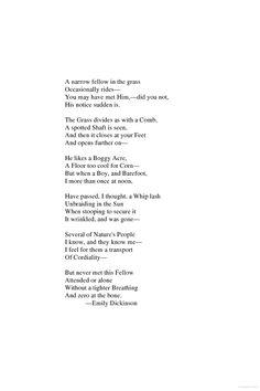 Zero at the Bone - click to read/     Emily Dickenson