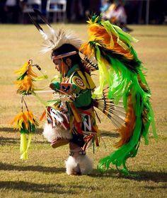 Little Pow Wow Dancer native regalia boy Native American Children, Native American Beauty, Native American Photos, American Indian Art, Native American History, American Indians, American Girl, Native American Regalia, American Symbols