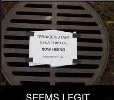 teenage mutant ninja turtles hiring