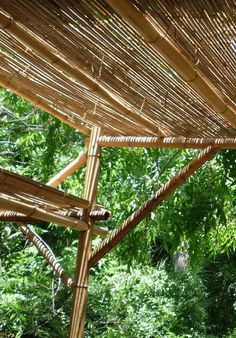 bamboo reed roll used for shade on pergola