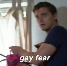 @TrashySoda Gay Aesthetic, Quality Memes, Wholesome Memes, Meme Faces, Mood Pics, Stupid Funny Memes, American Horror Story, Reaction Pictures, Dankest Memes