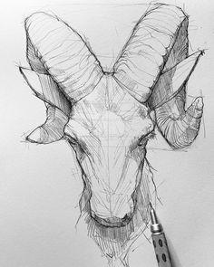 Pencil arts group on do you like animal sketches art by maloart Pencil Art Drawings, Art Drawings Sketches, Eye Drawings, Sketch Art, Drawing Art, Drawing Tips, Figure Drawing, Drawing Ideas, Animal Sketches