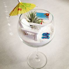 Miniature Beach Garden in a Wine Glass by myminiaturegarden, $20.00