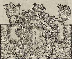 Il latte della sirena è un simbolo enigmatico ed affascinante, che ricorre con una certa frequenza nella storia dell arte, ed in particolare dal rinascimento in poi.