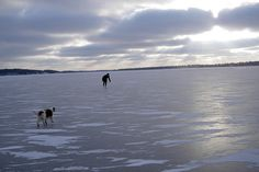 Slemmern in Mariehamn #Finland