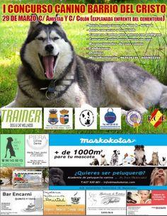 Concurso Canino Barrio del Cristo Valencia