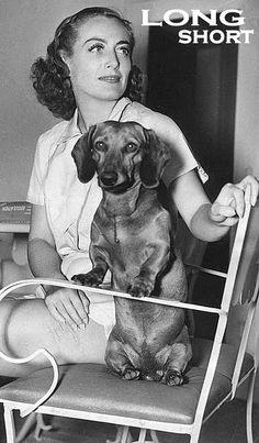 Dachshund Dearest (Joan Crawford) ♥♥♥ dauchshund dauchshunds weenier weeniers weenie weenies hot dog hotdogs doxie doxies ♥♥♥