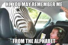 """LOL! Poor baby. :) """"Hi! You may remember me! I am from the alphabet!"""""""