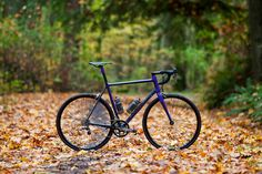 Beautiful Bicycle: My Argonaut Cycles Road - PROLLY IS NOT PROBABLY