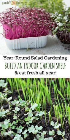 How to Build an Indoor Garden Shelf and grow fresh food indoors all year