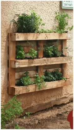 44 Pallet Planter Ideas For Your Balcony Garden - Balcony Decoration Ideas in Ev. - 44 Pallet Planter Ideas For Your Balcony Garden – Balcony Decoration Ideas in Every Unique Detail - Pallet Garden Walls, Vertical Pallet Garden, Herb Garden Pallet, Pallet Gardening, Pallet Garden Projects, Palet Garden, Vertical Gardens, Vegetable Gardening, Garden Ideas For Pallets