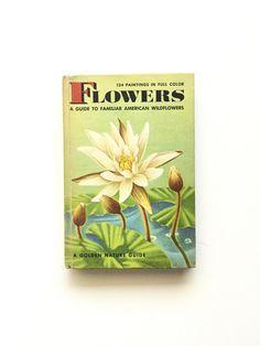 Vintage Hardbound Golden Nature Guide Flowers / by BertramBergamot