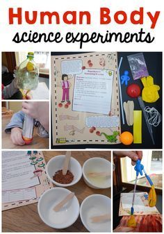Check out all these fun human body activities for kids! Hands-on activities are the BEST way to learn!