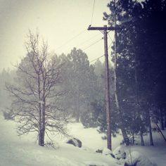 winter in flagstaff, arizona