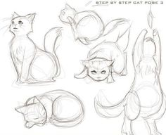 Cat drawing totally so cute: