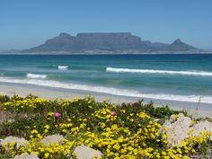 Von fast einem Jahrzehnt Leben und Arbeiten in Kapstadt habe ich dir die besten Tipps und meine Erfahrung mitgebracht, damit auch deine Auswanderung nach Südafrika prima klappt. Strand, Mountains, Beach, Water, Travel, Outdoor, Europe, Cape Town, New Life