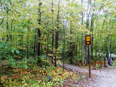 Six Mile Lake Provincial Park Ontario Canada - This way to the washrooms! Ontario Camping, The Good Place, Wanderlust, Canada, Outdoor Structures, Park, World, Places, Travel