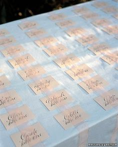 Outdoor escort card table with organza ribbon overlay -- weight down the ribbon at intervals to prevent cards blowing away