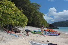Snapper Island Sea Kayak Tour - Crocodylus Village