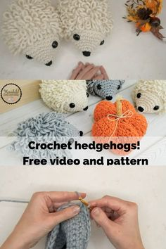 Crochet hedgehog - free video tutorial and pattern - Now you can make your own . Crochet hedgehog - free video tutorial and pattern - Now you can make your own cute hedgehogs! These guys are fun and qu. Crochet Hedgehog, Crochet Animal Amigurumi, Crochet Amigurumi Free Patterns, Crochet Animal Patterns, Stuffed Animal Patterns, Crochet Dolls, Easy Crochet Animals, Diy Hedgehog Toys, Crochet Keyring Free Pattern