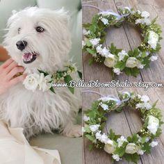 Dog wedding collar, Pet Wedding Attire, Girl dog collar,Flower pet collar Dog…