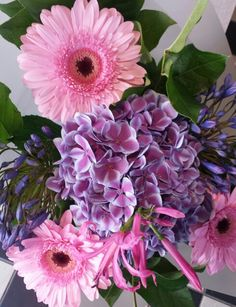 Purple and pink hand tied