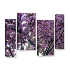 ArtWall Spring Flowers by Dan Wilson 4 Piece Photographic Print on Wrapped Canvas Staggered Set Size: