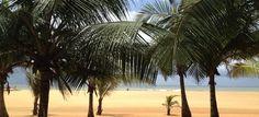 Sri lanka : entre Temples et Cocotiers Le Sri Lanka, Destinations, Parc National, Temples, Comme, Beach, Photos, Outdoor, Tropical Forest