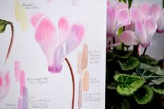 Botanical and Nature Art by Krzysztof Kowalski