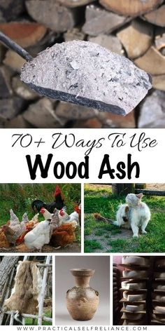 70 Ways to Use Wood Ash from a Wood Burning Stove Wood Ash Uses for Home Garden and Survival Historical and Modern Uses for Wood Ash