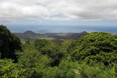 ASCENSION ISLAND Ascension Island, Saint Helena, Africa Travel, Remote, Mountains, Places, Nature, Cunha, Naturaleza
