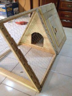 Casa de conejo tarimas