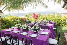 Backyard Elegance with purple, white and green.