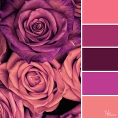 Ideas for wall paper pattern flower color palettes Color Schemes Colour Palettes, Colour Pallette, Color Combos, Color Balance, Design Seeds, Color Swatches, Color Stories, Color Theory, Pattern Paper