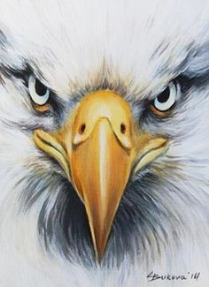 ACEO ORIGINAL ART EAGLE CLOSE UP FACE BIRD DETAILED oil painting by G.B.