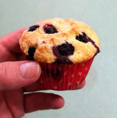 Blueberry Muffins - based on the revised Ruhlman's ratio