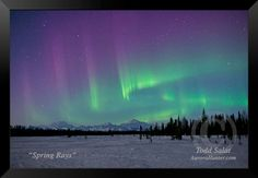 Spring Rays, aurora borealis photo from Alaska