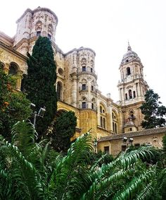 Malaga Cathedral- built in renaissance style was the centre of the old town. Malaga surprised us ... away from the beach and new promenades the older town was filled with quaint narrow streets and lush green gardens. . . #malaga #andulucia #spain #malagacathedral #gardens #oldtown #traveltales #traveldiaries #travellingcouple #vanlife #followingourdreams #livinglife #travel #lppathfinders #rennaissance #wanderlust #travelblogger #cathedral #lifeisbeautiful #lifejourney4two #satisfyyoursoul