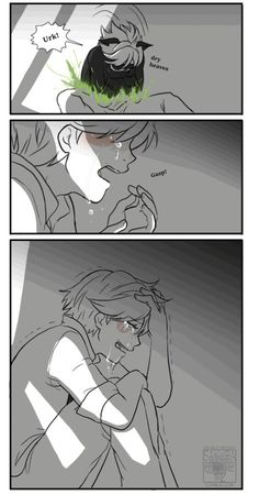 Miraculous Adrien and Chat Noir