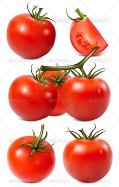 Vector Collection of Red Ripe Tomatoes