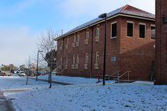 Snow at Orange Health Service in July 2014.