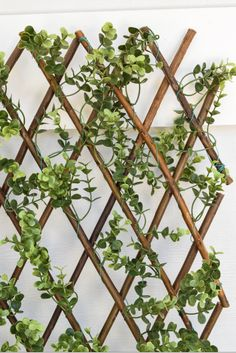 "This Faux Boxwood Lattice Screen adds appeal to any place you put it. Requires no maintenance, UV stable to resist fading and weather resistant, making it perfect for outdoor or indoor use. Use as a privacy screen, cover unsightly views, decorate it with flowers or lights, and so much more! - Fully Expanded: 39"" H x 78"" L - Expands from 20"" W to 78"" W - UV Stable - Weather Resistant - Outdoor or Indoor Use"