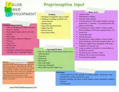 Proprioceptive Input