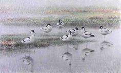 Avocets - Lars Jonsson - oil on canvas Coups, Bird Art, Beautiful Birds, Oil On Canvas, Illustration Art, Wildlife, Sketches, Paintings, Drawings