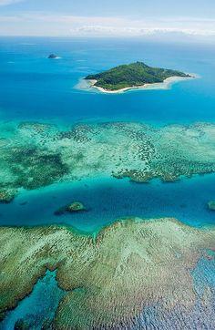 The coral reef near Castaway Island, Fiji (by Castaway Island, Fiji).