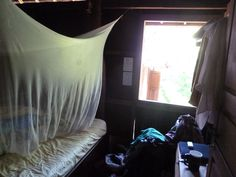 Typical volunteer bedroom Laos, Elephant, Bedroom, Elephants, Bedrooms, Master Bedrooms, Dorm