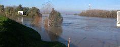 Maltempo: allarme a Bondeno, controllo assiduo. Mercoledì nuova ondata di piena - VIDEO | Telestense