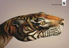 Cool WWF Ad
