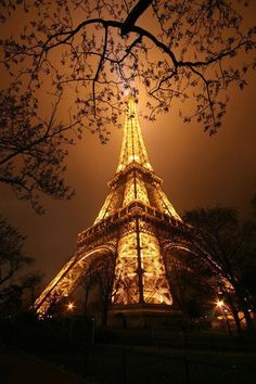 Amazing shot of the Eiffel Tower lit up at night!